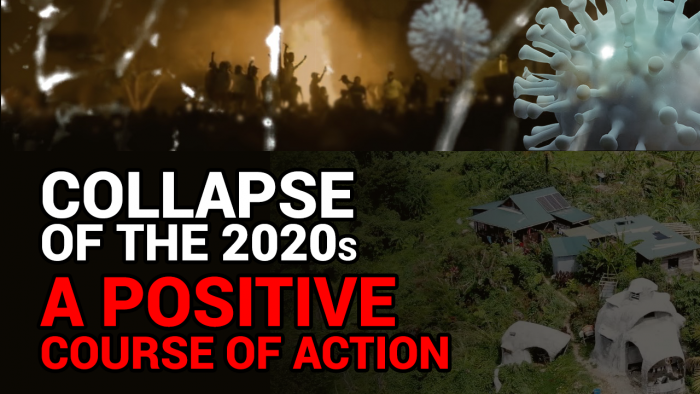 Collapse Of The 2020s
